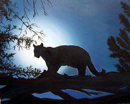 http://www.zoopraha.cz/cs/o-zoo/novinky/nocni-prohlidky-prodlouzeny